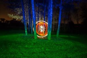 Das Auge im Wald